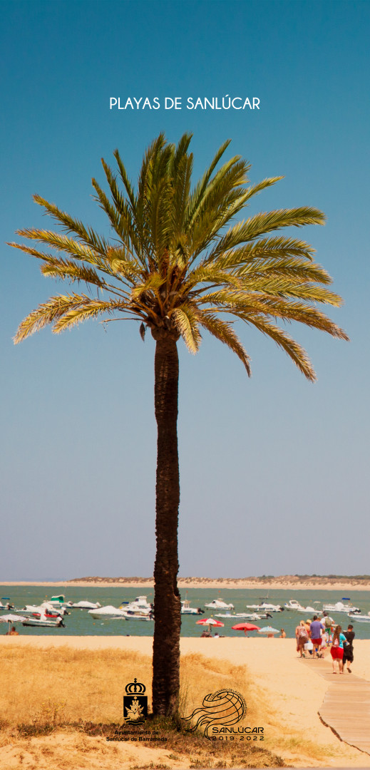 Fotografía playa de Las Piletas